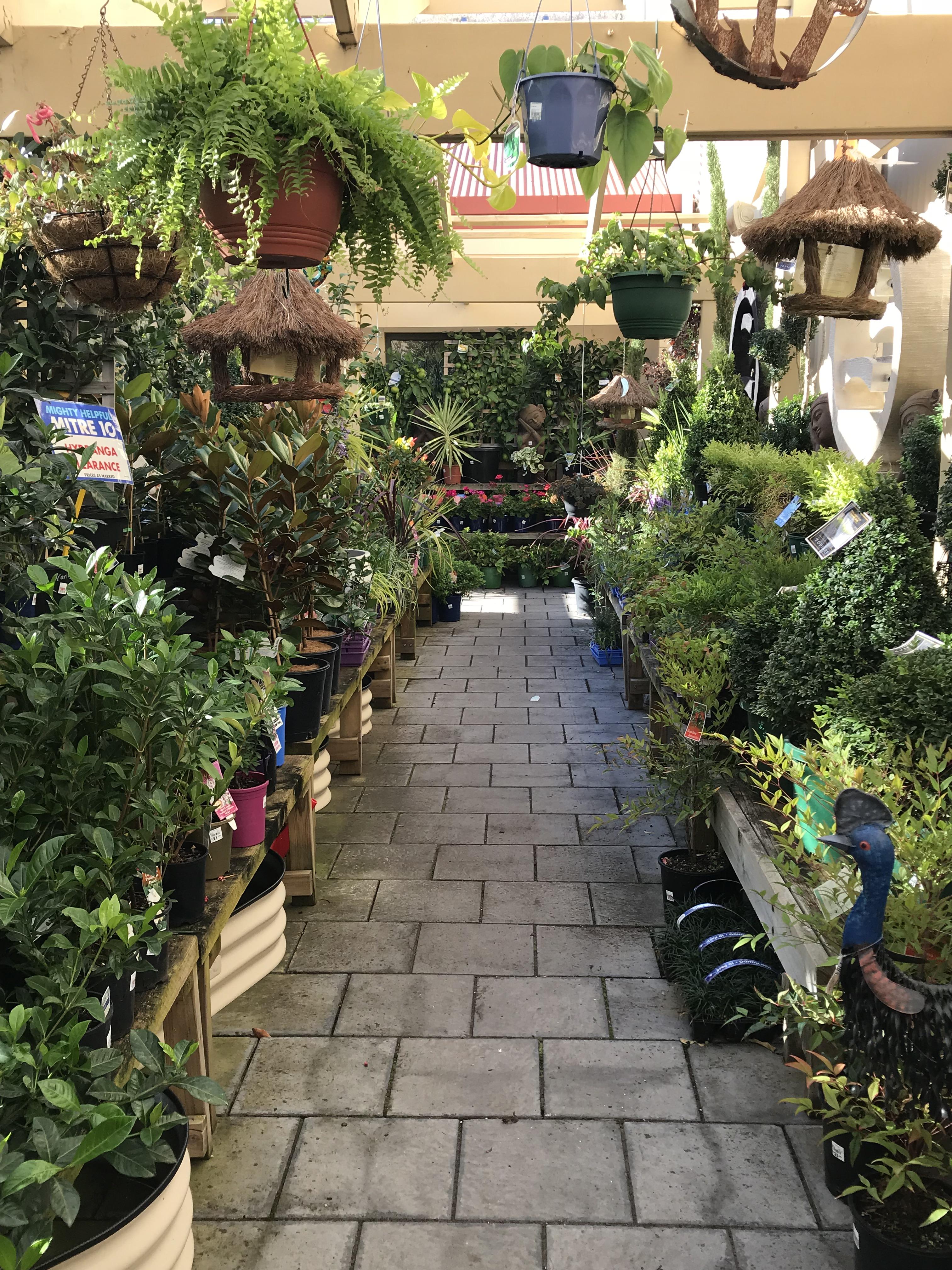 garden centre 7