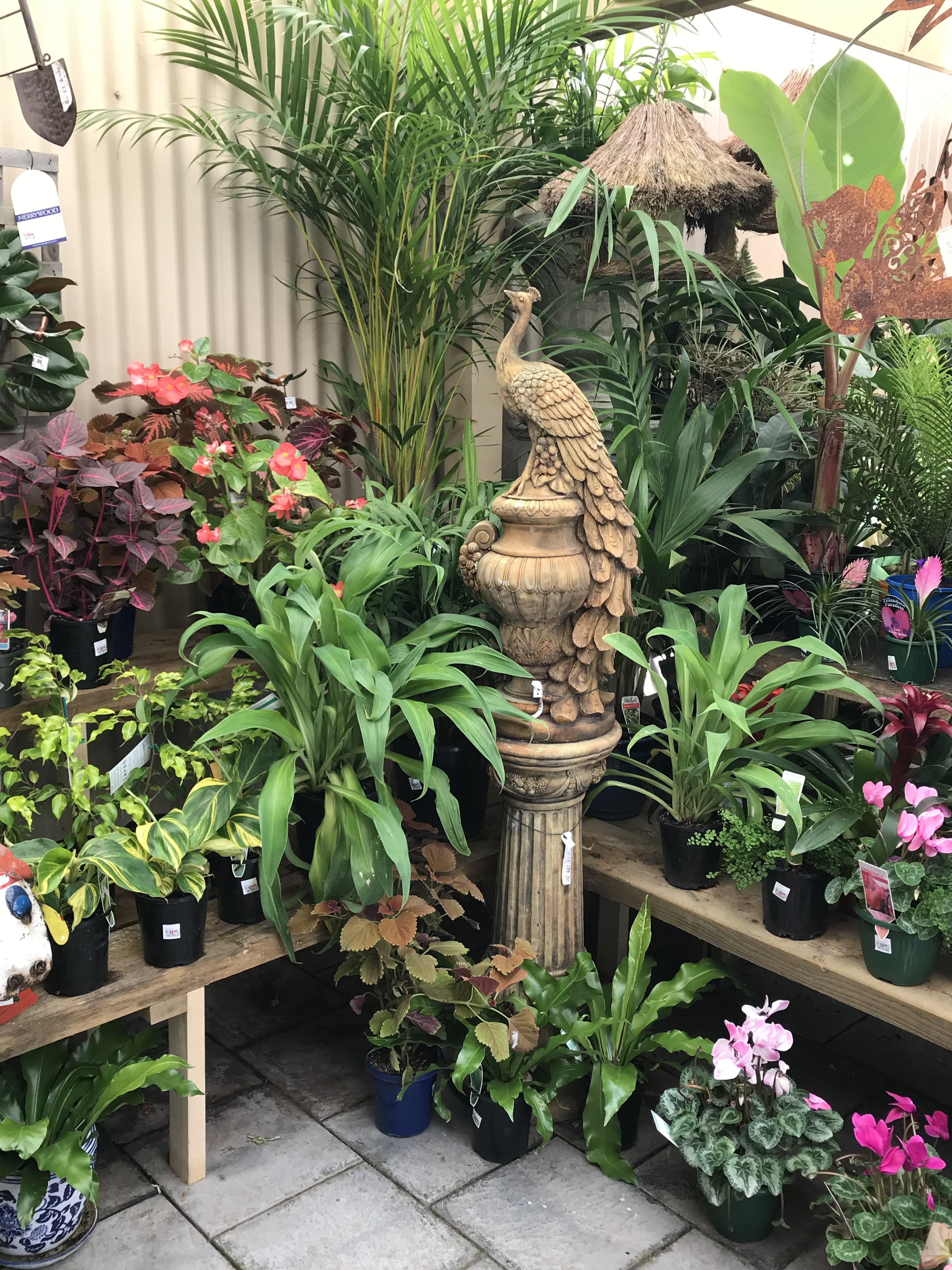 garden centre 4