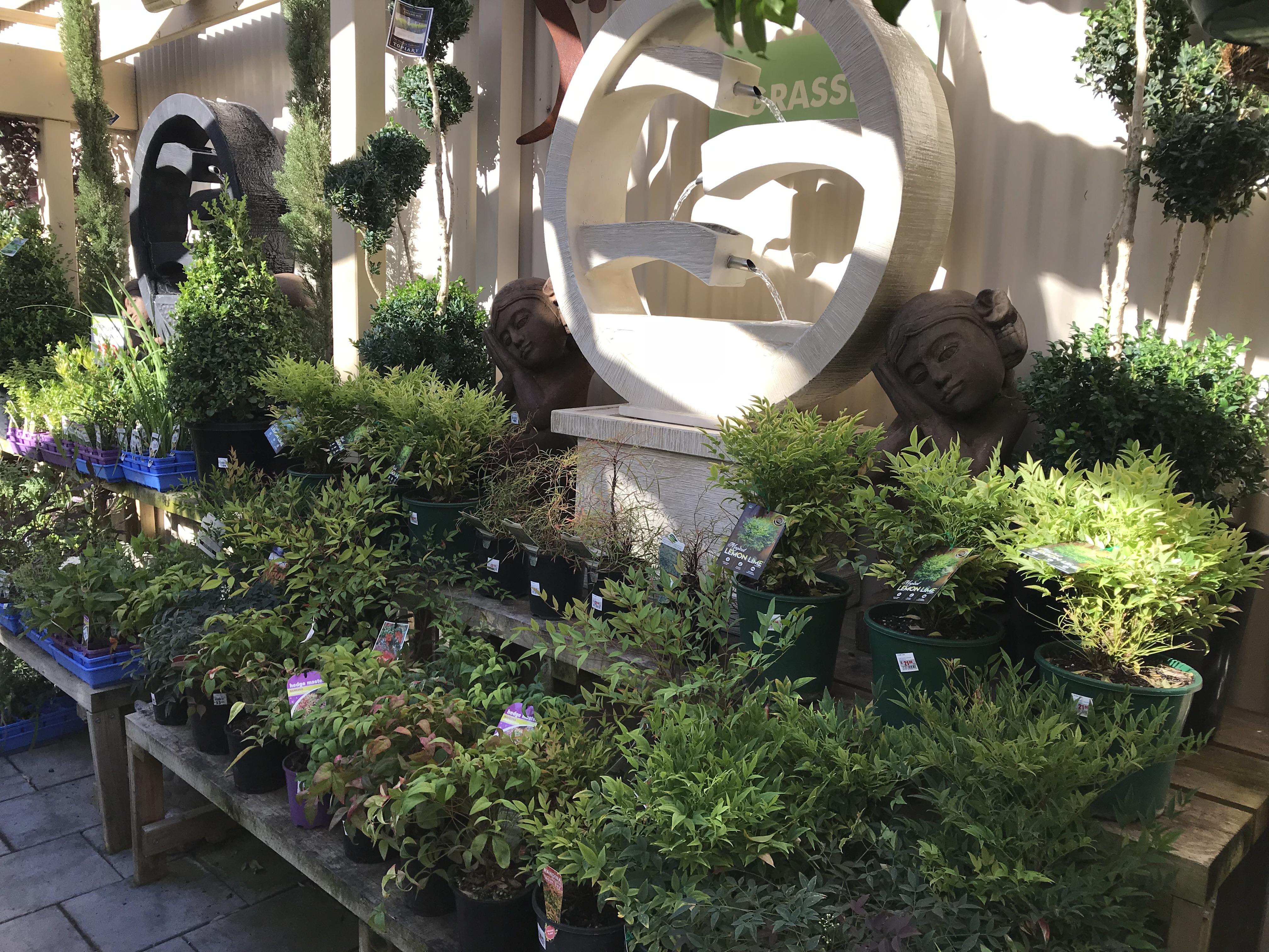 garden centre 10