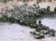 water-3093341.jpg