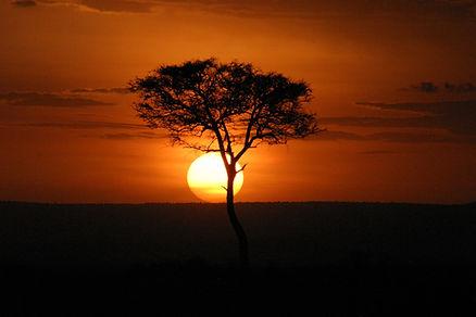 masai-mara-4.jpg