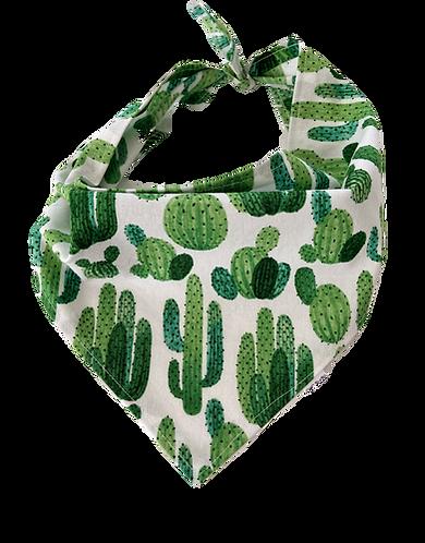 Cactus Bandana