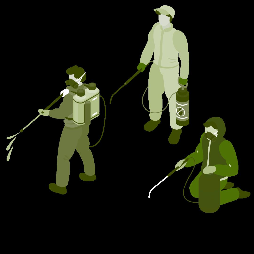 Commercial Pest Inspection