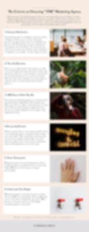 Infographic - Marketing Agency Criteria.