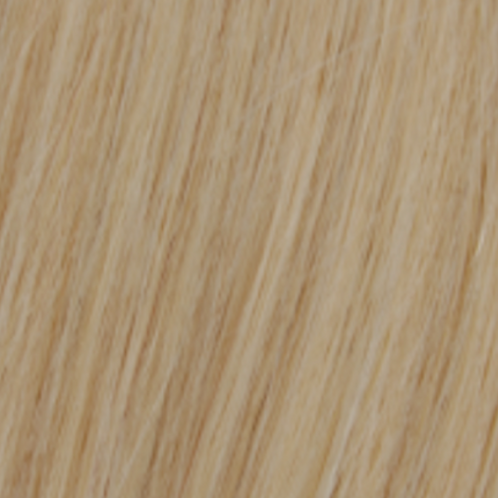 Blonde Clip-In Hair Extensions #613