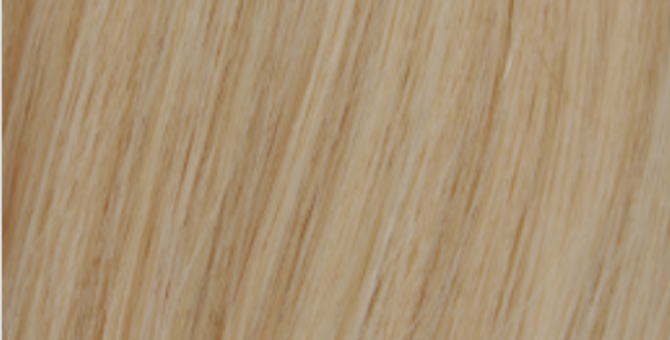 Blonde (#613) Clip-In Extensions (Price Varies by Length)