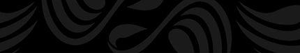 Swan Districts Website Header5.jpg