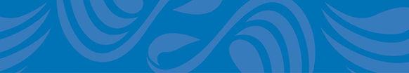 Swan Districts Website Header.jpg