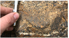 Cientistas dão novas pistas para encontrar depósitos de minério de ferro