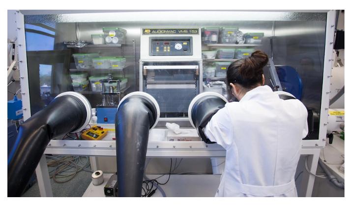 Cientistas querem que baterias de íon de sódio comecem a competir com baterias de íon de lítio