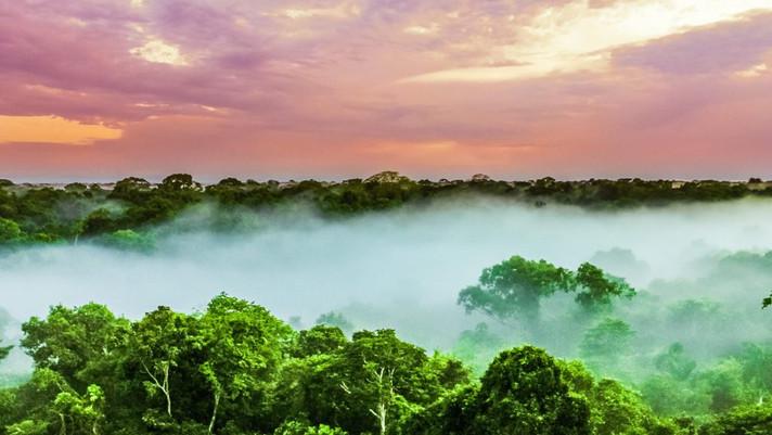 Minerar a Amazônia traz baixo retorno para as comunidades locais