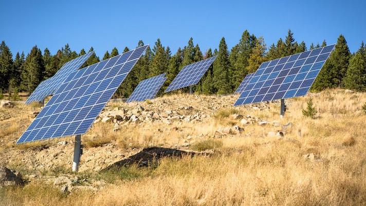 Teck visa a neutralidade de carbono em 2050