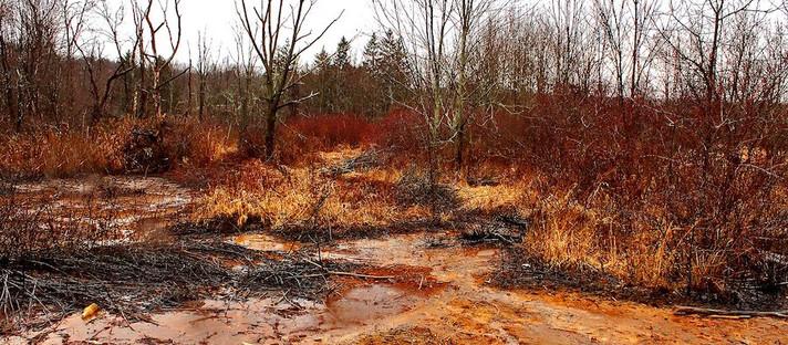 Cientistas encontram uma maneira eficiente de extrair REE da drenagem ácida de minas