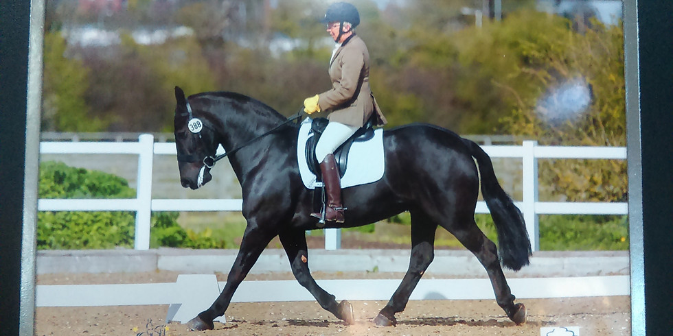 Horse Fitness & Vet/Health Check for TREC