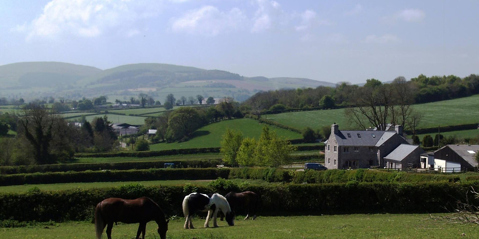 The Gables TREC Experience (North Wales)