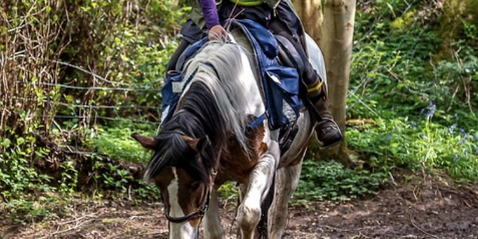 Ride with your mind/TREC clinic with Helen Wain