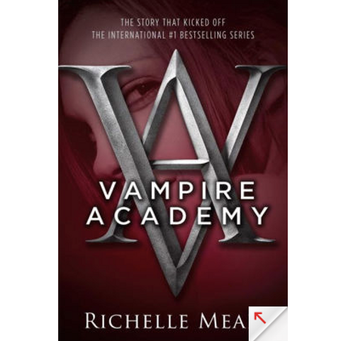 Vampire Academy by Richelle Mead (Vampire Academy Series #1)
