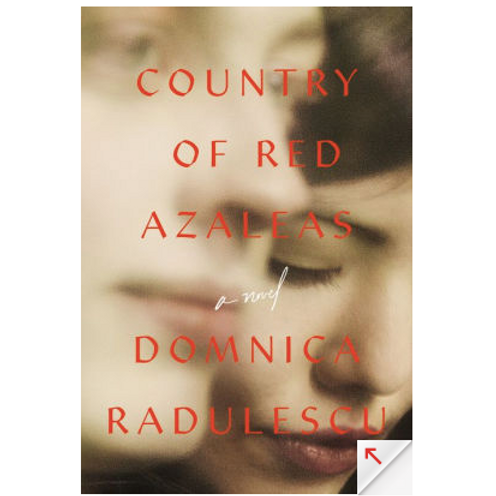 Country of Red Azaleas by Domnica Radulescu