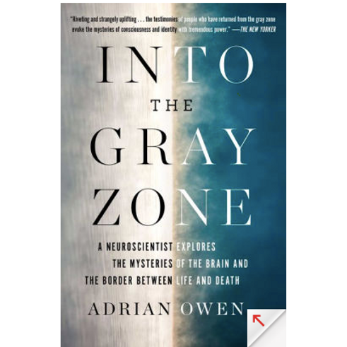 Into the Gray Zone by Adrian Owens