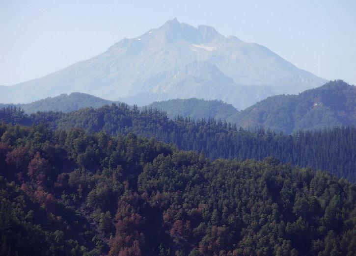 Nevados_del_longavi.jpg