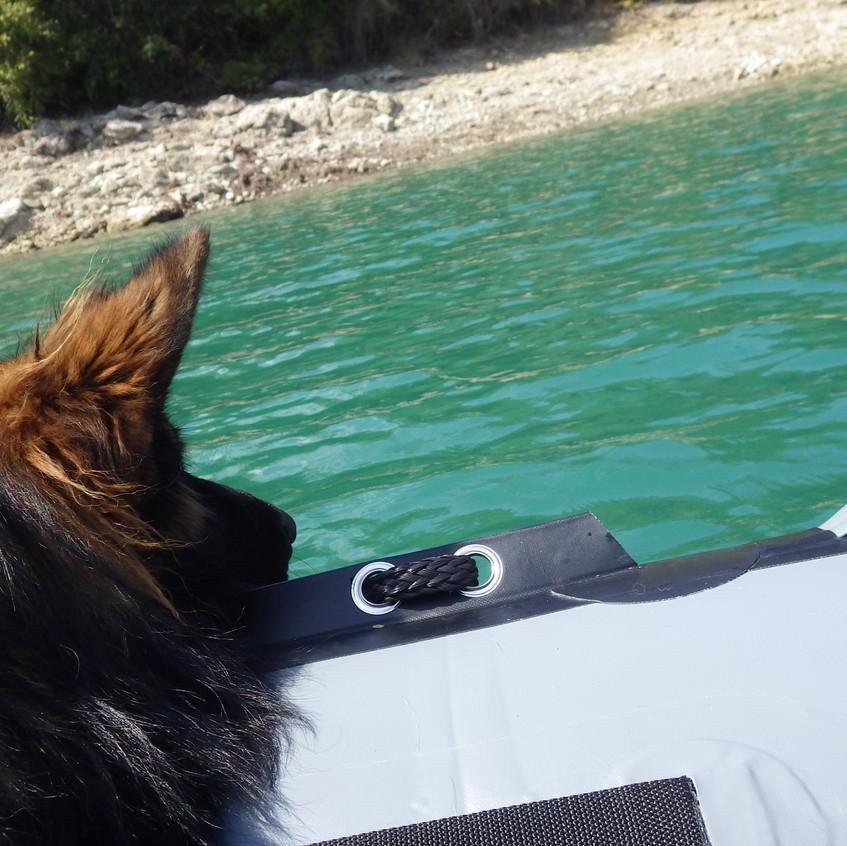 Ohé, du bateau !