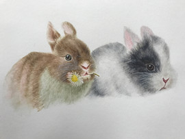 Love Bunnies - watercolor on Arches Paper