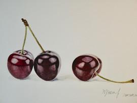 Cherries - Watercolor