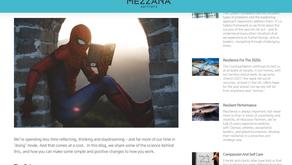Insights on Reflection for Mezzana