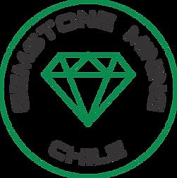 Logo chile curvo.png