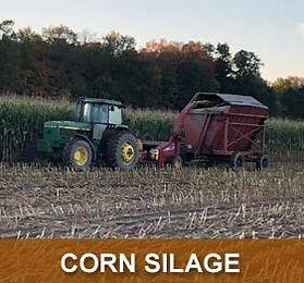 prod-corn-silage.jpg