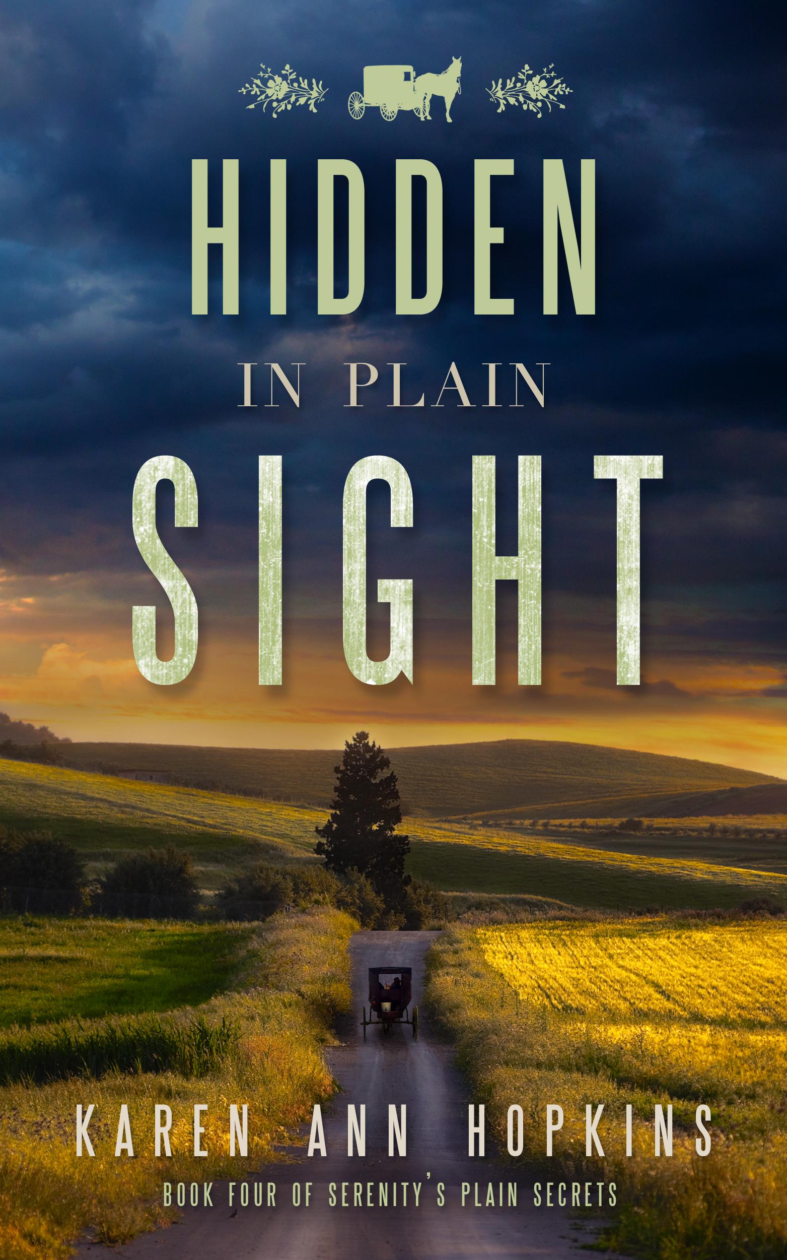 HiddenPlainSight_FC
