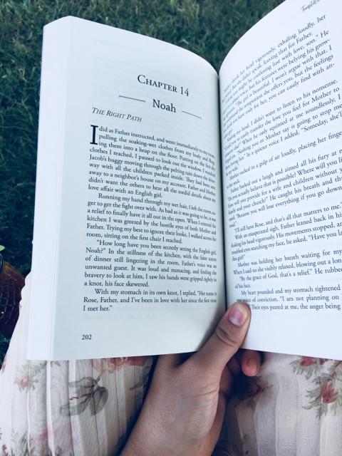 Bookpromo4