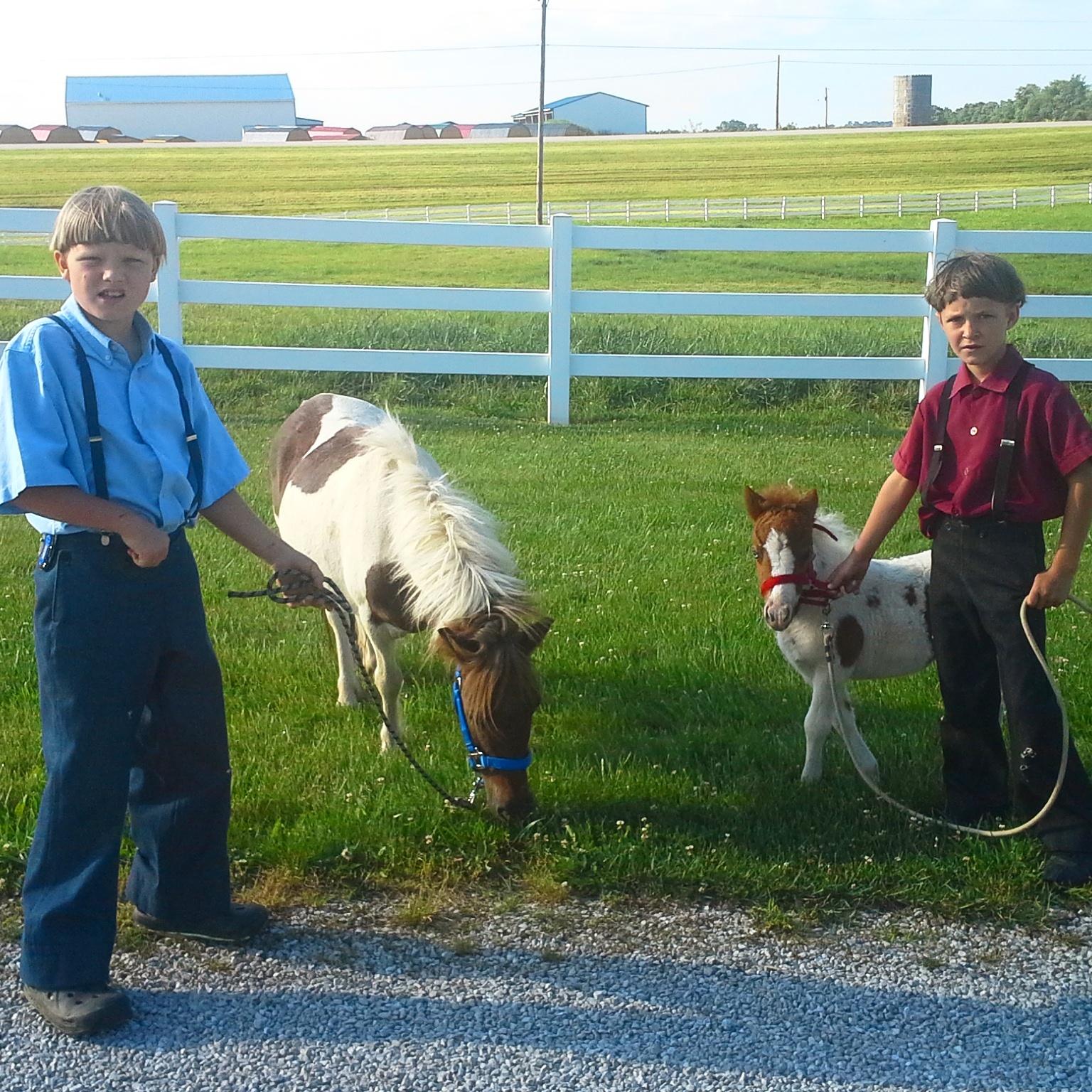 AmishboysIMG_20160608_092913