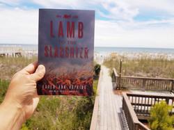 Lamb Beach 2