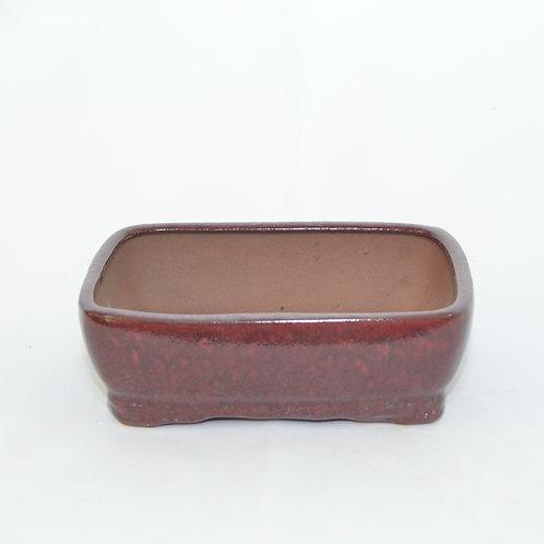 """Bonsai Pot - 8"""""""