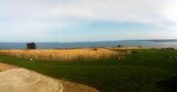 herbes douces devant la mer