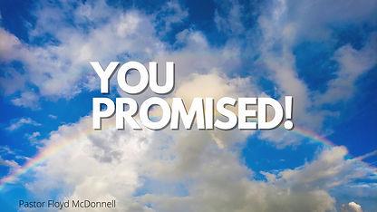 YOU PROMISED!.jpg