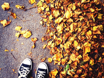 Autumn is here!