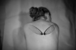 little-wings2w.jpg