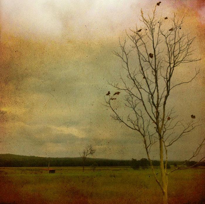 culburra-road_Lea-Hawkins-P1w.jpg