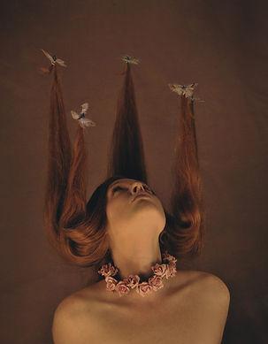 HAIR-butterfliesW.jpg