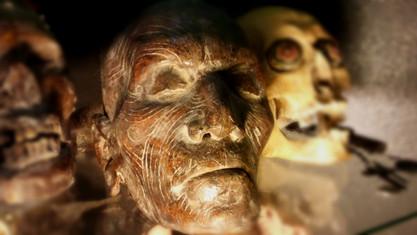 Maori Mummified Sculpture