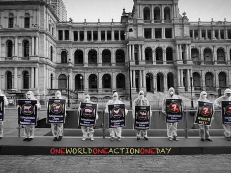 Eating Animals causes Pandemics ..ONE WORLD ONE DAY ONE ACTION..
