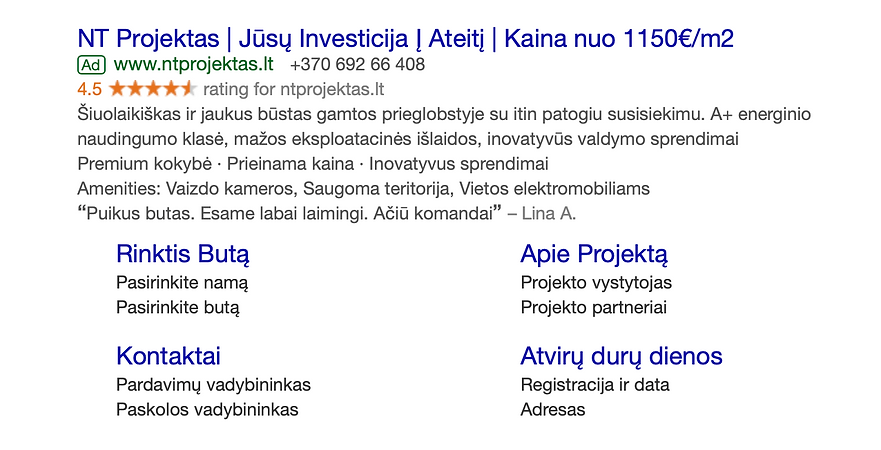 Google Adwords pavyzdys.png