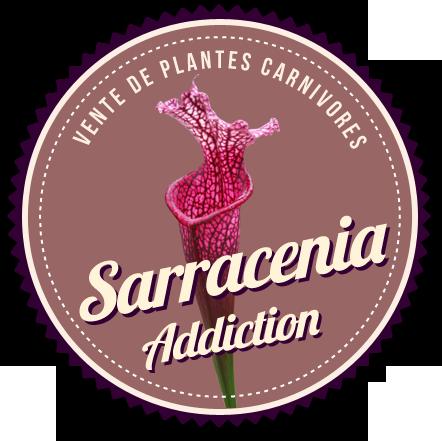en.sarracenia-addiction.com
