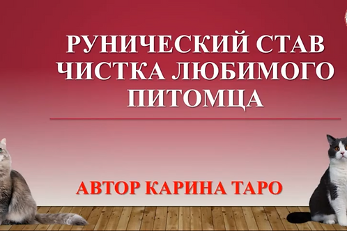 "Урок РМ ""Чистка домашних питомцев"" (Автор Карина Таро (Кузьма)."