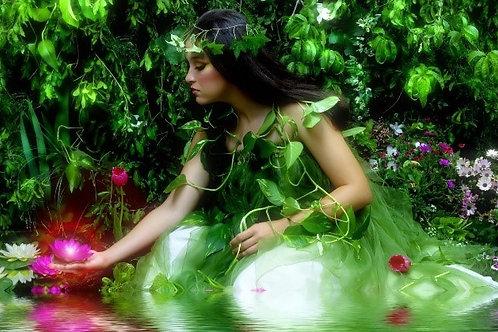 Магия цветов и растений
