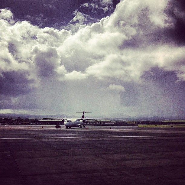 Instagram - Waiting to fly