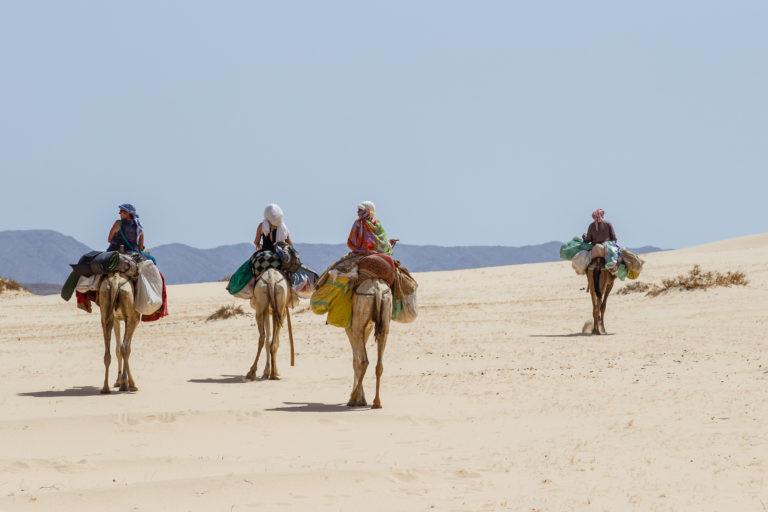Wüste-583-768x512.jpg