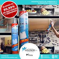 desinfectante ambiental 2 (1).png